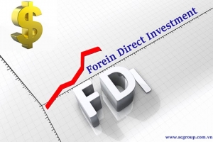Bộ Chính trị lần đầu ban hành Nghị quyết về thu hút vốn FD